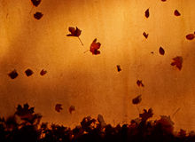 Autumn leaves on the canvas roof in sunlight Stock Photography