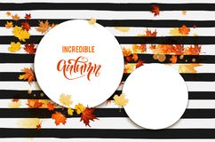 Autumn leaves card Royalty Free Stock Photos
