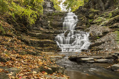 Autumn Leaves in Cascadilla Gorge Stock Image