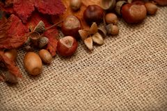 Autumn Leaves Chestnuts and Acorns over jute background Royalty Free Stock Photography