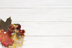 Autumn leaves and chestnuts. Autumn background with leaves and chestnuts Stock Images