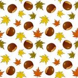 Autumn Leaves Chestnuts Seamless Pattern Foto de archivo libre de regalías
