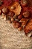 Autumn Leaves Chestnuts y bellotas sobre fondo del yute Imagen de archivo