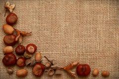 Autumn Leaves Chestnuts y bellotas sobre fondo del yute Fotografía de archivo libre de regalías