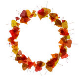 Autumn leaves in a circle. Raster Royalty Free Stock Photos