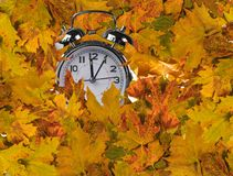 Autumn leaves clock  for market background Stock Image