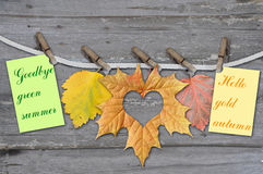 Autumn leaves with clothes-peg Royalty Free Stock Image