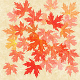 Autumn leaves collage. Background with rice paper texture Stock Photos