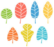 Autumn leaves collection in vibrant colors Royalty Free Stock Images