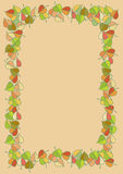 Autumn leaves colored pattern Royalty Free Stock Image