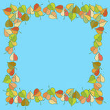 Autumn leaves colored pattern Royalty Free Stock Photo