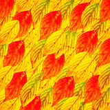 Autumn leaves colorful background Royalty Free Stock Photo
