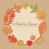 Autumn leaves colorful greeting card. On polka dot background royalty free illustration