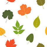 Autumn leaves. Colorful seamless pattern. Vector illustration. Stock Photography