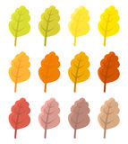 Autumn leaves colors Royalty Free Stock Images