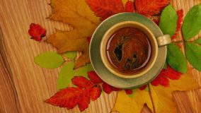 Autumn Leaves con café almacen de video