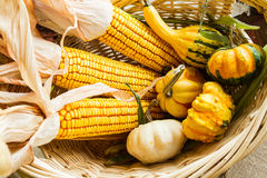 Autumn leaves, corn and gourds Stock Photo