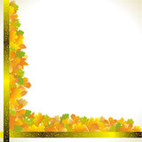 Autumn leaves corner Royalty Free Stock Photography