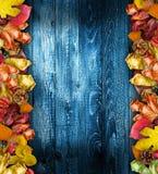 Autumn Leaves Cover royaltyfri fotografi