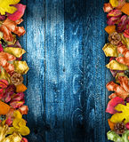 Autumn Leaves cover Royalty Free Stock Photography