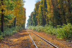 Autumn leaves cover train tracks in New England Stock Photo