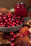 Autumn leaves and cranberries Stock Photo