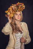 Autumn leaves crown Stock Images