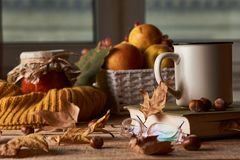 Autumn leaves, cup of coffee, warm scarf, fruits basket and book stock images