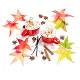 Autumn leaves cup hot drink spices Flat lay decoration. Autumn leaves and cup of hot drink with spices on white background. Flat lay decoration stock photo