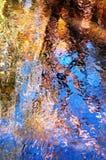 Autumn Leaves d'Odessa Photographie stock libre de droits