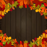 Autumn leaves on dark wooden background. Design element for flye Royalty Free Stock Image