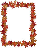 Autumn Leaves-de foto van het ontwerpkader Stock Foto's