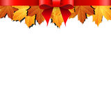 Autumn leaves decorated with red bow Royalty Free Stock Images