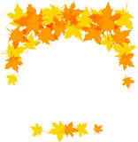 Autumn leaves. Decorative borders isolated on white. Clip art stock illustration