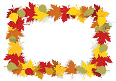Autumn leaves decorative frame. Stock Photos