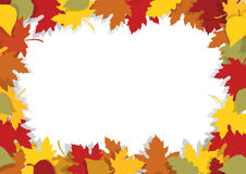 Autumn leaves decorative frame. Stock Images