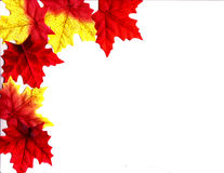 Autumn Leaves Design. An autumn design illustrated background with leaves of fall colors Stock Photography