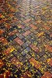 Autumn leaves on diagonal brick sidewalk after rain Stock Photo