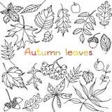 Autumn leaves doodles set royalty free stock photos