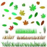 Autumn Leaves e Autumn Grass Immagini Stock Libere da Diritti