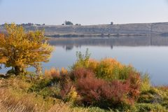 Autumn Leaves e le erbe aromatizzano sul contesto del deserto del dun lungo il fiume Columbia immagini stock