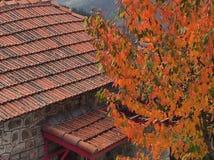 Autumn Leaves ein rotes Ziegeldach Stockfotografie