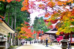 Autumn Leaves em Koyasan, templo budista japonês imagens de stock royalty free