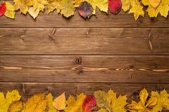 Autumn Leaves en fondo de madera oscuro Foto de archivo