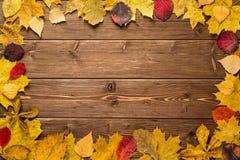 Autumn Leaves en fondo de madera oscuro Imagen de archivo