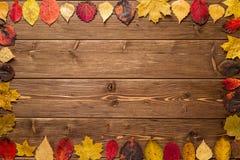 Autumn Leaves en fondo de madera oscuro Fotografía de archivo