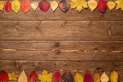 Autumn Leaves en fondo de madera oscuro Imagen de archivo libre de regalías
