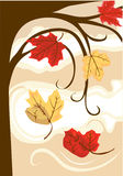 Autumn Leaves Fall Stock Photo
