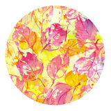 Autumn leaves fall watercolor Royalty Free Stock Photography
