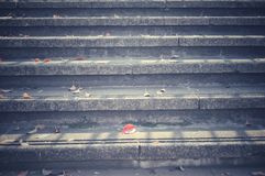 Autumn leaves fallen on staircases royalty free stock photography